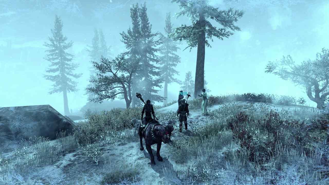 Frost und Eis in Elder Scrolls Online Greymoor