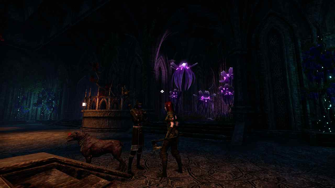 Neben-Quest in Elder Scrolls Online Greymoor
