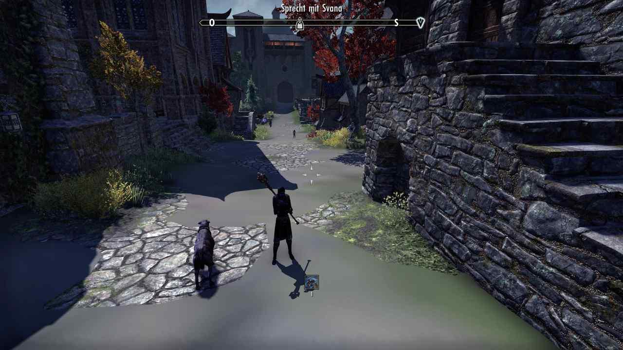 Textur-Bug in Elder Scrolls Online Greymoor