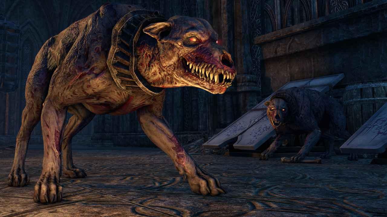 Todeshund der Collector's Edition von Elder Scrolls Online Greymoor